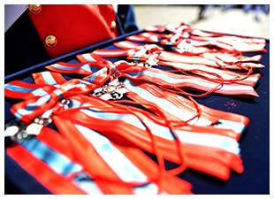Medalha Ordem do Mérito Naval