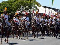 O desfile hipomóvel com 220 cavalos promete encantar adultos e crianças