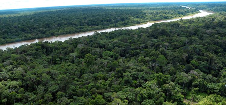 Censipam processa 1,5 milhão de quilômetros para detectar desmatamento ilegal na Amazônia