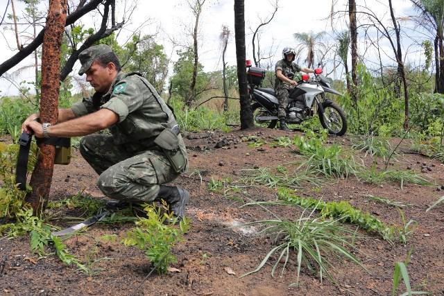 Ações de preservação do meio ambiente na área de Instrução do Batalhão