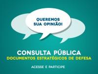 consulta publica 1