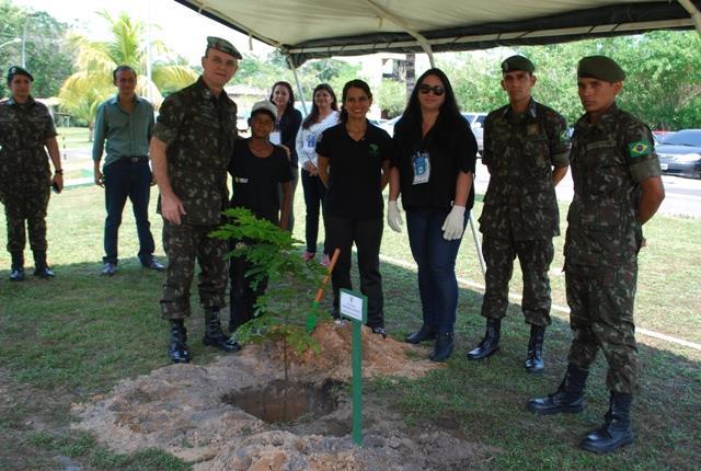 Dia da Árvore: A importância da preservação e conscientização do meio ambiente
