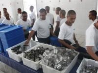 Escola de Aprendizes Marinheiros de Pernambuco