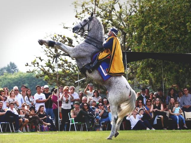 Mais antiga Unidade de Cavalaria do Exército celebra nascimento de Osorio com cerca de 20.000 convidados