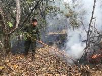 Fuzileiros Navais combatem queimadas em Tocantins
