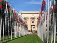 apresentada na ONU em Genebra