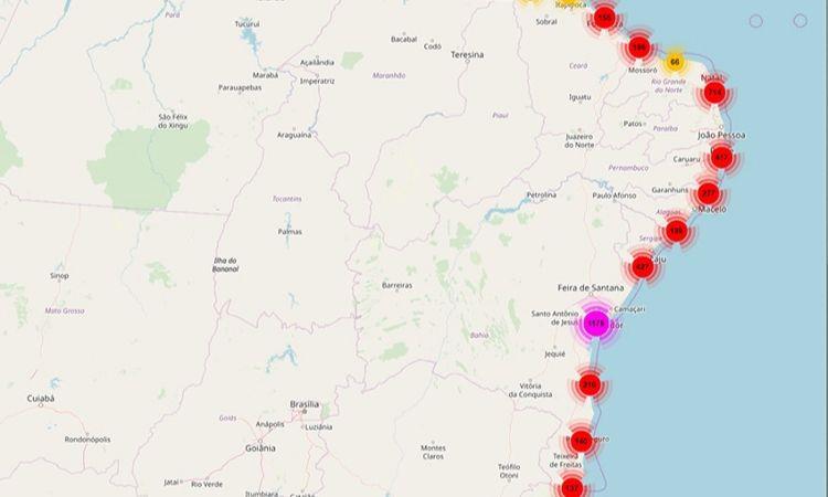 Aplicativo coleta informações sobre manchas de óleo no litoral brasileiro