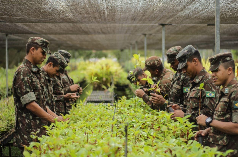 No Acre, militares do 7° BEC contribuem para a recuperação florestal de áreas degradadas da Amazônia