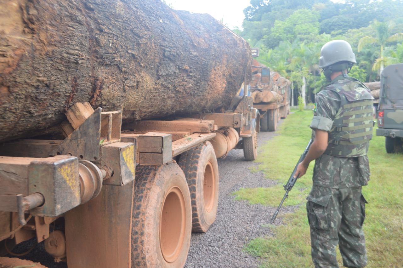 Apreensões de madeira e caminhões em Mato Grosso somam R$ 10,5 milhões