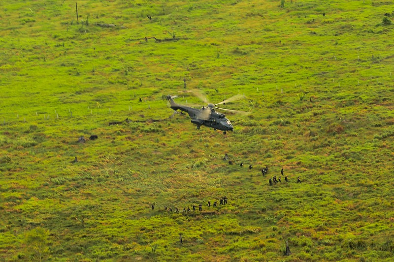 Operação Verde Brasil 2 apreende quase 10 mil metros cúbicos de madeira sob investigação