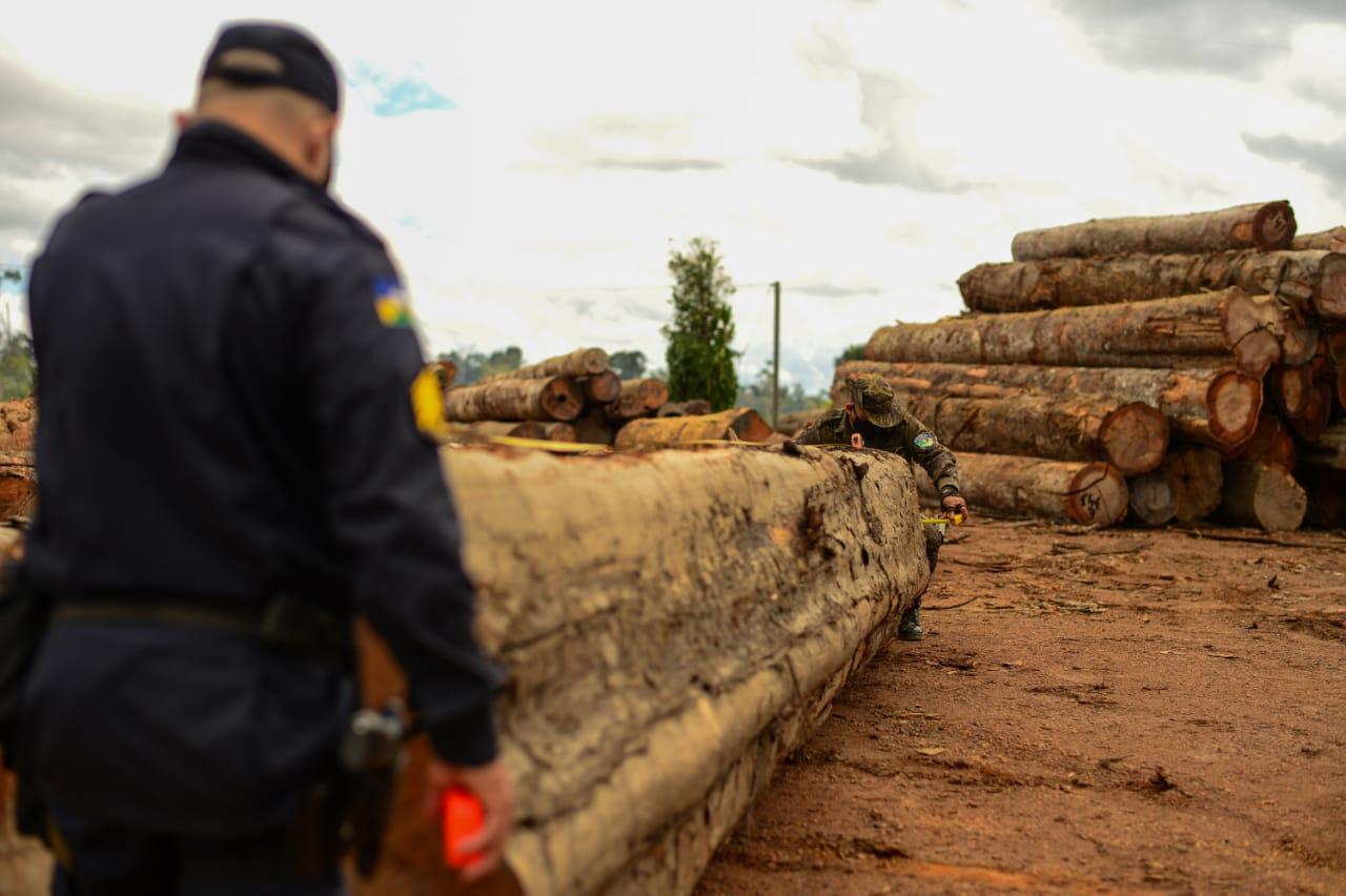 Intensificação de vistorias reprime delitos ambientais na Amazônia Legal