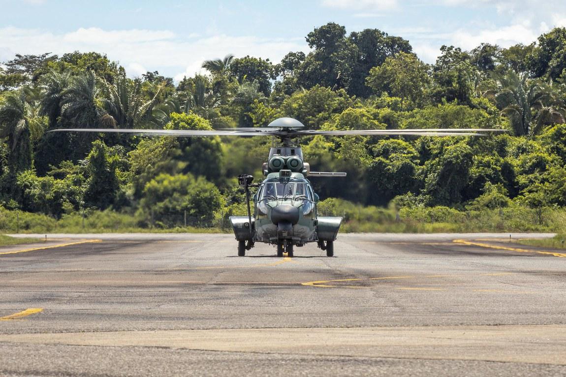 Operação Verde Brasil 2 soma 17,3 mil metros cúbicos de madeira ilegal apreendida