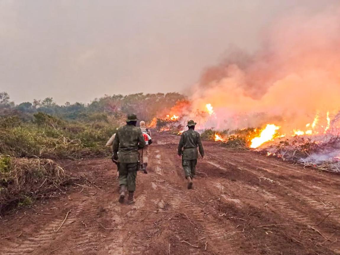 Forças Armadas reforçam o combate a focos de incêndio no Pantanal