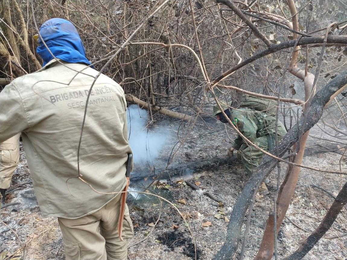 Guerra contra incêndios no Pantanal emprega 14 aeronaves