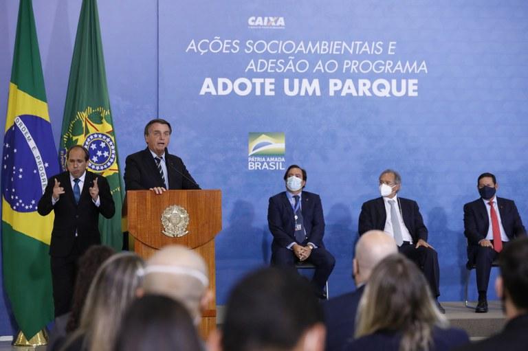 Caixa investirá R$ 150 milhões para preservar florestas brasileiras